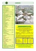 visualizza giornale - Sezione Luino - Page 2