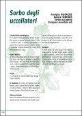 Salice bianco - Sorbo selvatico - Page 3