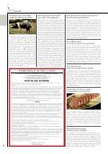 S&C1_13 - Alimentando - Page 6