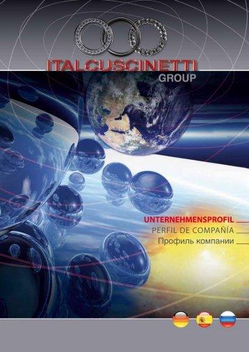 shanghai italcuscinetti co., ltd.