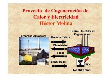 Proyecto de Cogeneración de Calor y Electricidad - Programa de ...