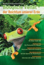 Biologische Vielfalt – der Reichtum unserer Erde - Biodiversität ...