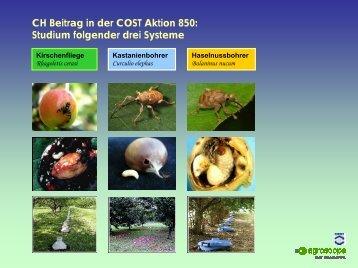 Projektkurzbeschriebe COST 850 - COST Action 850