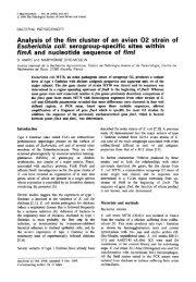 Analysis of the fim cluster of an avian 02 strain of Escherichia coli ...