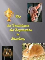 Bayernschau - Straubing