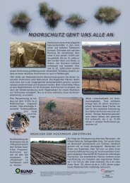MOORSCHUTZ GEHT UNS ALLE AN - BUND Kreisgruppe Region ...