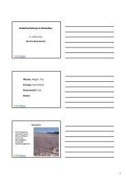 Bodenbearbeitung im Biolandbau
