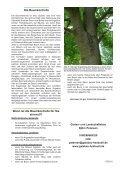 Baumkontrolle nach FLL - sylt-galabau.de - Seite 3