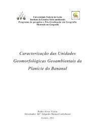 Caracterização das Unidades Geomorfológicas Geoambientais da ...