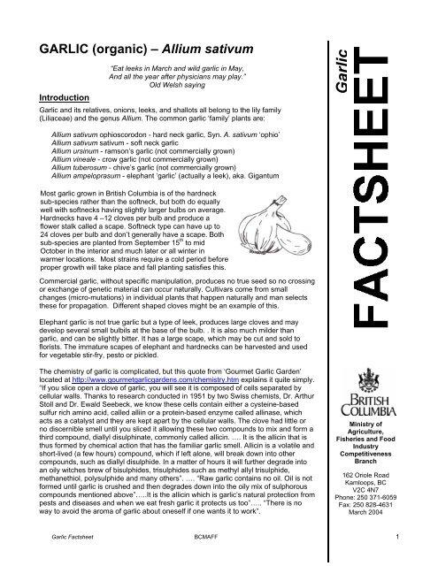 Garlic (organic) – Allium sativum - British Columbia ... - Agriculture