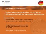 Exportinitiative Energieeffizienz – ein Angebot für - GIZ
