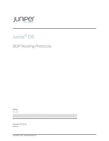 BGP Routing Protocols - Juniper Networks