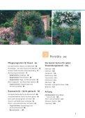 ROSEN pflegen - Seite 3