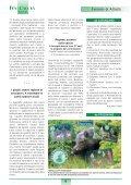 Natale 2005 Natale 2005 - Italcaccia - Page 4