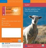 Broà - PAH0127 Gudair 6 - Zoetis New Zealand