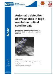 Automatic detection of avalanches in high- resolution optical satellite ...