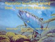 Population Structure Alsea Basin Steelhead - Banks