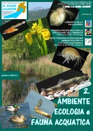 Quaderno didattico versione novembre 2012 - Agenzia provinciale ...