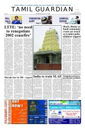 LTTE: 'no need to renegotiate 2002 ceasefire'