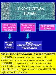 LA GESTIONE ITTICA - Provincia di Terni