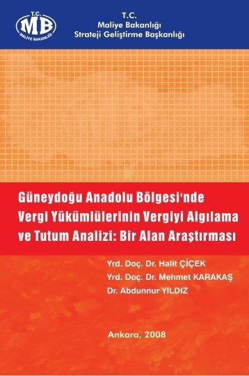 kitap 2008-381