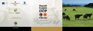 Visualizza Ricettario in formato pdf - Mozzarella di Bufala Campana ...
