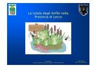 """Serata informativa """"La tutela degli anfibi nella Provincia di Lecco"""""""