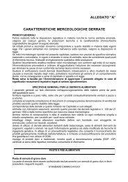 ALLEGATO A CARATTERISTICHE ... - Protezione Civile
