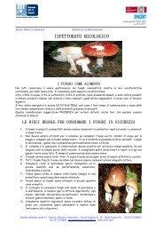 Funghi e regole - Comune di Empoli