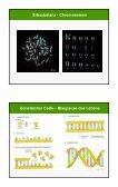 Genomische Selektion - Revolution in der Tierzucht? - AgriGate AG - Seite 7