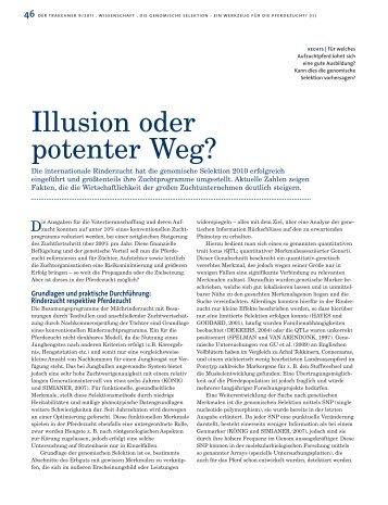 Illusion oder potenter Weg? - Peter Richterich