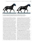 Illusion oder potenter Weg? - Peter Richterich - Page 4