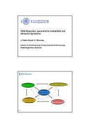 DNA-Reparatur, genomische Instabilität und klinische Syndrome