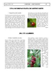 Io, un albero - Direzione Didattica di Avigliana
