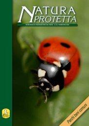 Sfoglia on-line - Parco Nazionale d'Abruzzo Lazio e Molise