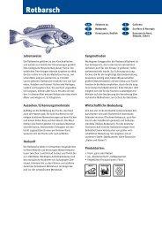 Rotbarsch - Fisch