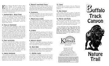Kanopolis SP Buffalo Track Canyon - Kansas Department of Wildlife ...