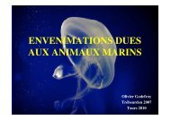 Envenimations dues aux animaux marins (Olivier Godefroy)