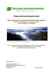 PDF-Download (ca. 2.33 MB) - Bioenergie-Regionen