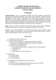 compte rendu de reunion comité de pilotage de resinfo du 29/11/2010