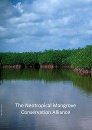 The Neotropical Mangrove Conservation Alliance - BirdLife ...
