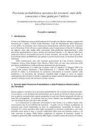 documento di sintesi - Dipartimento della Protezione Civile