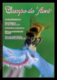 Copia di giornale:1-52.qxd.qxd - Campo de'fiori