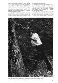 """Giuseppe Penone: """"Intervista"""" di Mirella Bandini, DATA # 7 ... - artslab - Page 2"""