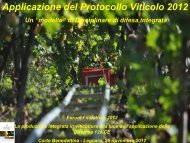 Filippo Taglietti - Veneto Agricoltura