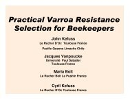 Practical Varroa Resistance Selection for Beekeepers - Immenfreunde