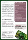 LA BOUTEILLE EN VERRE - Adelphe - Page 2