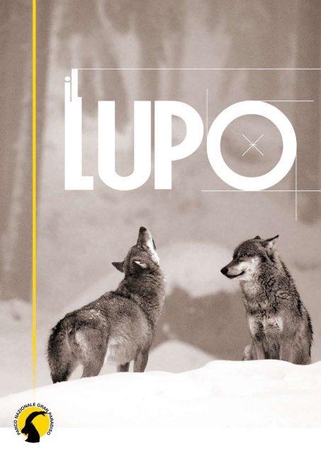 Lupi in inverno-PDF o STAMPATO GRAFICO 14 CONTE