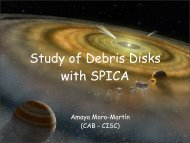 Study of Debris Disks with SPICA