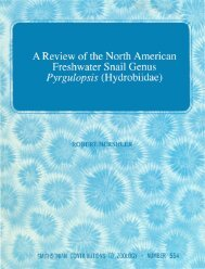 A Review of the North American Freshwater Snail Genus Pyrgulopsis